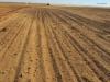 sudan-pics-2011-123